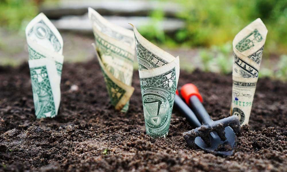 Finance for Landscaping Business Owners of All Sizes, Part 3